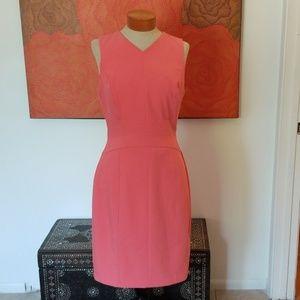 WHBM beautiful zip back v neck pink dress
